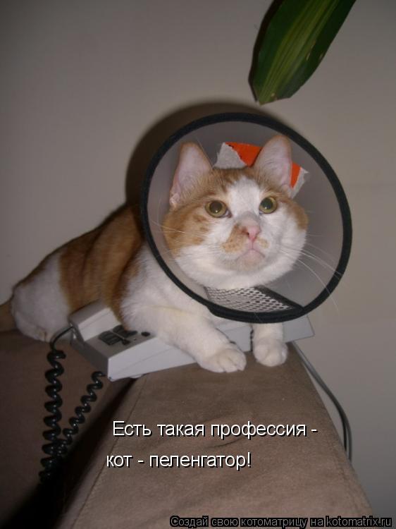 краснодарский край справочник домашних телефонов